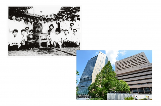 医学部附属病院前のメタセコイアは、1956(昭和31)年医学部7回生が古畑教授の文化勲章受章を記念して植樹したものである。右は2012(平成24)年現在の様子。