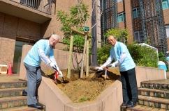 同窓生と八重桜を植樹する大山学長