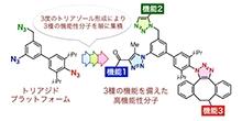 「3種の機能を備えた分子の収束的合成法の開発に成功」【細谷孝充 教授】