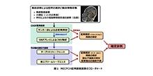 「小頭症・小脳脳幹部低形成 (MICPCH)を伴う発達遅滞の包括的解析」【稲澤譲治 教授】