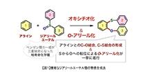 「複雑なジアリールエーテル類の新しい合成法の開発」【細谷孝充 教授】
