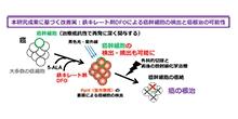 「癌再発に深く関わる癌幹細胞が診断薬5-ALAによる検出を免れる特性を発見」【田賀哲也 教授、椨康一 助教】