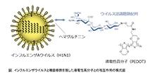 「インフルエンザウイルスを高感度かつ選択的に検出する導電性プラスチックの開発」【合田達郎 助教】