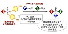 「3つの異なる置換基を有するホスフィンオキシド類の合成法の開発」【細谷孝充 教授】