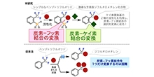 「炭素―フッ素結合の変換を経る含フッ素化合物の新しい合成法を開発」【細谷孝充 教授】