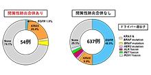 「日本人の肺腺がん約300例の全エクソン解析から間質性肺炎を合併した肺腺がんに特徴的な遺伝子変異を発見」【本多隆行 特任助教】